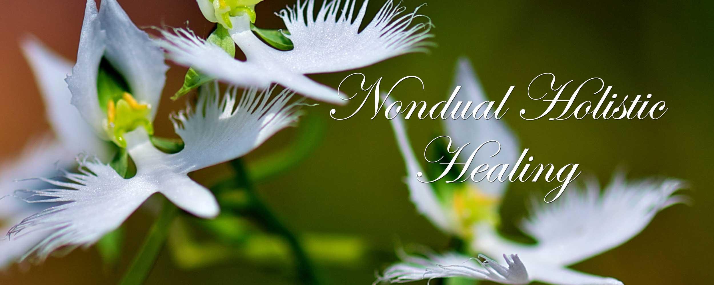 Nondual Holistic Healing